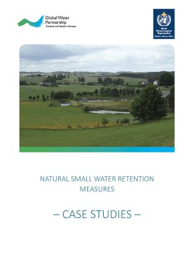 Natural-Small-Water-Retention-Measures-case-studies