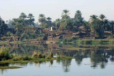 Nile Delta Landscape
