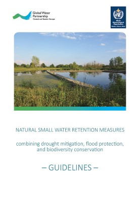 Guidelines Small water retention measures